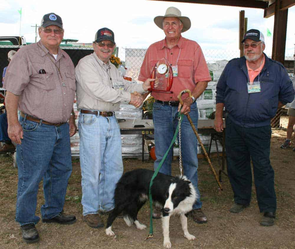 GSDA Member, Hubert Bailey, wins overall sheep with Cole and Reserve overall sheep with Jim, at the 2015 Sunbelt Ag Expo Tria.